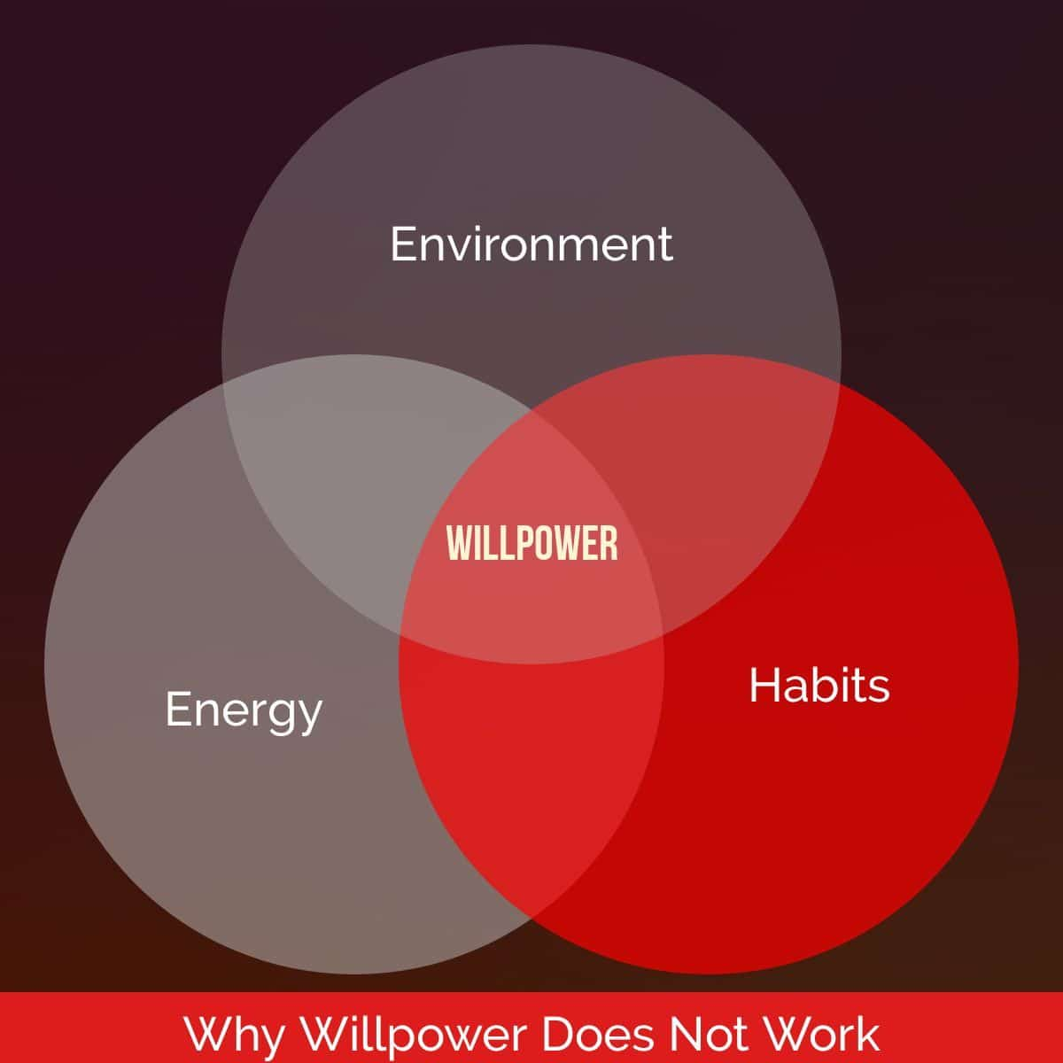 Why Willpower Does Not Work